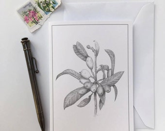 Greeting Card - Loquat