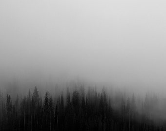 Misty Forest - Misty Forest Photo - Forest Landscape - Black and White - Digital Photo - Digital Download - Instant Download - Wall Art