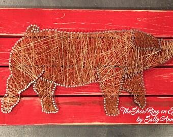 Ms. Duroc - Duroc Show Pig