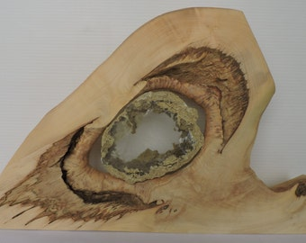 Wood art with selenite mineral
