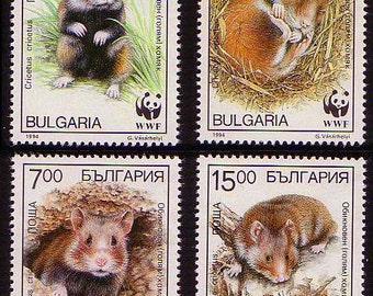 FREE SHIPPING WORLDWIDE. Hamster Stamp Set of 4