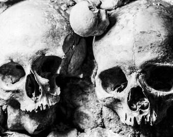 Catacombs of Paris Skulls Digital Photography Print