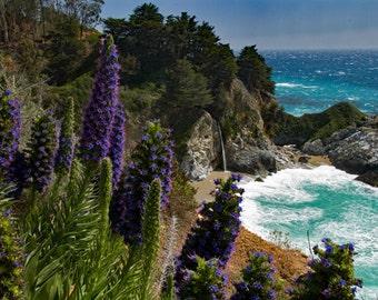 Mcway Cove Falls, Big Sur California