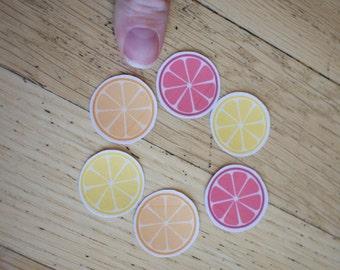 Mini Fruit Stickers
