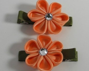 Peach & Green Hair Clip Set