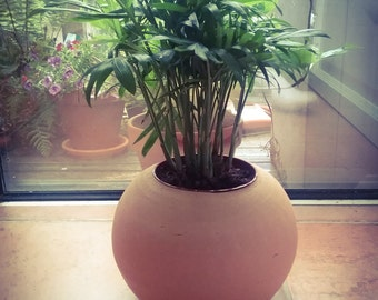 Kokedama fully ceramic pot