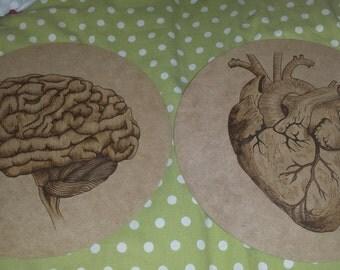 heart and brain set