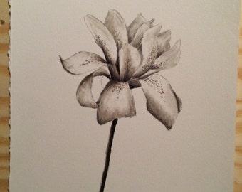 Magnolia Bloom - marker