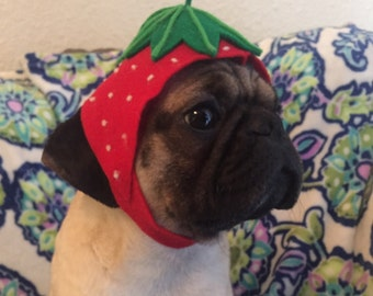 Strawberry Dog or Cat Hat Costume