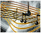Musical Notes Color Photo...