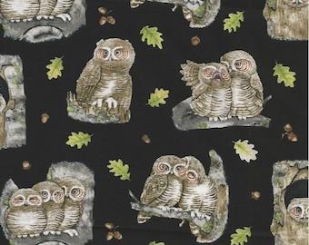 Owls Fabric...Adorable Owls on black Quilt Fabric Elizabeth's Studio 4313.