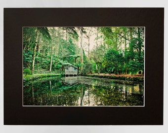 Boat Shed in Australian Rain Forrest Photography Landscape, Matted Print From The Dandenong Ranges Fine Art