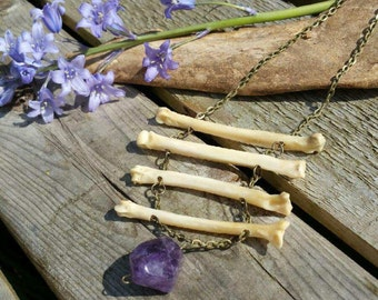 Coyote bone necklace with amethyst