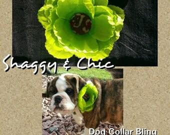 Adorable Dog Collar Bling Item #203