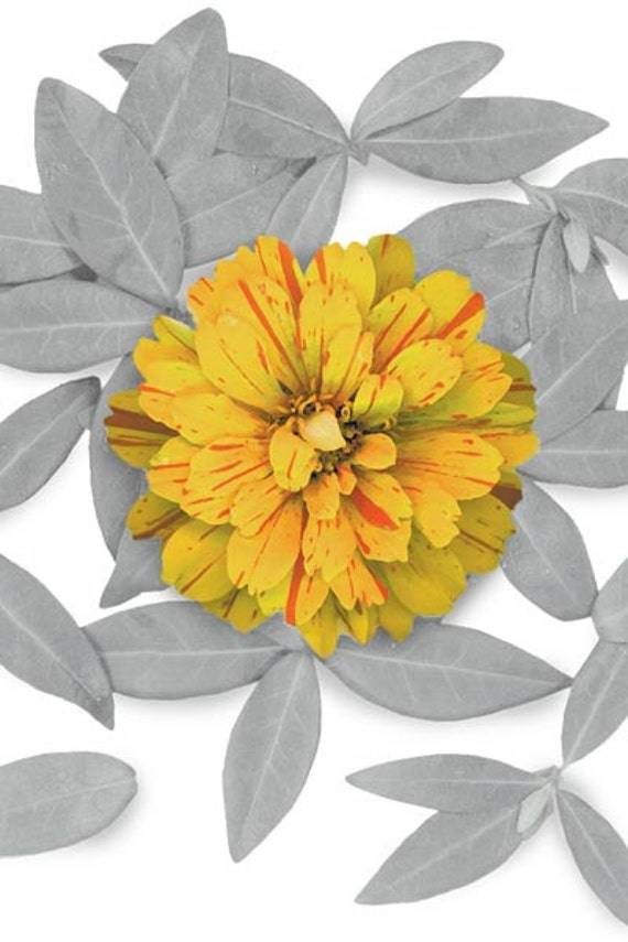 """Flowers transferred to fabric. Wall art digitally scanned on cotton duck canvas. Zinnia Grande, 22"""" x 32"""" wrapped canvas. Garden to fabric."""