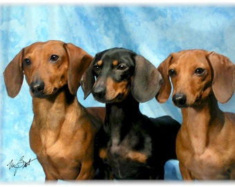 Dachshunds Dogs Smooth #1 Note Cards