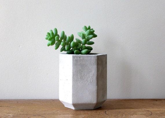 Big Pots Indoor Plants: Hexagon Cement Planter Perfect For A Cactus Or Succulent Plant