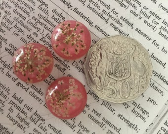3 Pink Dried Flower Cabochons