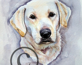 Yellow Lab- Print