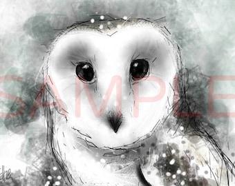 Snowy owl - A3 print