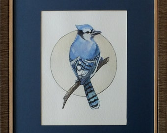 "Original watercolour painting ""Blue Jay"" bird by Elena Naylor, framed artwork"