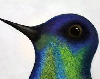Original Bird Prints