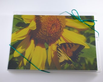 Sunflower and Butterfly Notecards