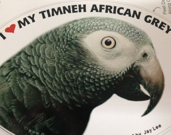Timneh African Grey Parrot Exotic Bird Vinyl Decal Bumper Sticker