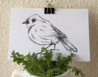 Handmade Baby Robin Art Print / Rockin' Robin Wall Art / Bird Print