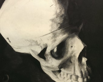 Skull in Shadow: Charcoal Drawing Print