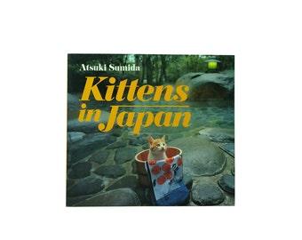 Kittens in Japan