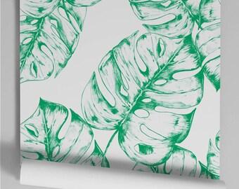 Monstera green wallpaper