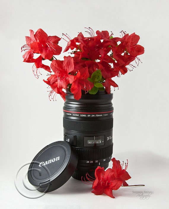 Canon...Innovative Solutions, Canon,flowers,red,color,photo art,photo,Home Decor,Home Decor Office,Gift,Wall Picture,Award Winning,Vertical