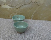 Teeny Wee Bowls Set of 2 - Handmde Stoneware Ceramic Pottery - Turquoise - Ants
