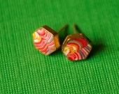 Hexagon 8mm Stud Earrings in Rainbow Tortoise