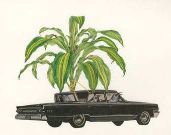Crows cruising home with contraband corn plant.  Original collage by Vivienne Strauss.