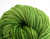 Windham 100% US Merino Hand Painted worsted weight 220 yds 201m ~4oz 113g Spring Green
