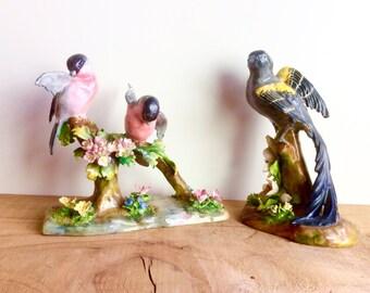 J.T.Jones Bird Figurines. 1940s Crown Staffordshire Fine Bone China Bird Figures, Large, with Flowers. Pair of Bullfinches, Widowbird.