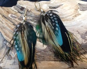Black blue feather earrings, cruelty free Christmas gift, handmade by Frogworks