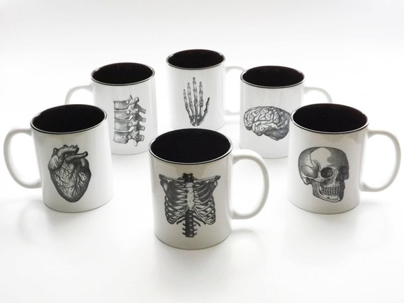 Anatomy coffee MUG gift medical school student graduation goth decor bones md organs nurse practitioner np rn physician assistant pa hostess