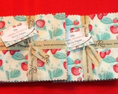 SALE 2 Packs 5 inch charm pack squares fabric SHABBY STRAWBERRY by Riley Blake from Emily Hughes