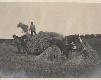 Original Vintage Photograph Snapshot Men Boy Working Haying on Farm Work Horse & Hay Wagon 1910s
