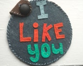 I Like You. Felt CD case for your special mix.