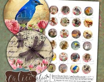 Woodland, 30mm Collage Sheet, Digital Circles, Printable Images, Digital Download, Collage Sheet, Animal Images, Cute Images, Animal Collage