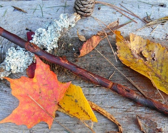 Plum wood wand, powers of fertility, protection spells, FREE US Shipping. magic wand, natural wood