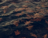 """Water Photography, Rustic, Lake, Autumn Leaves, Rust, Dark, Fall, 6x9 or 8x12. """"Autumn on the Lake""""."""