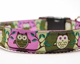 Owl Dog Collar / Hoot Owl / Purple and Lime Green / Custom Dog Collar