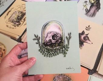 Rabbit Skull Drawlloween print
