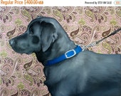 ON SALE Black Labrador Retriever, Blue Collar Pink Paisley Background - original oil painting by Clair Hartmann