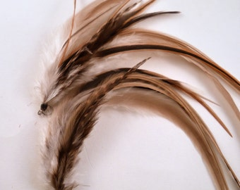 Feather Earrings just natural real feathers